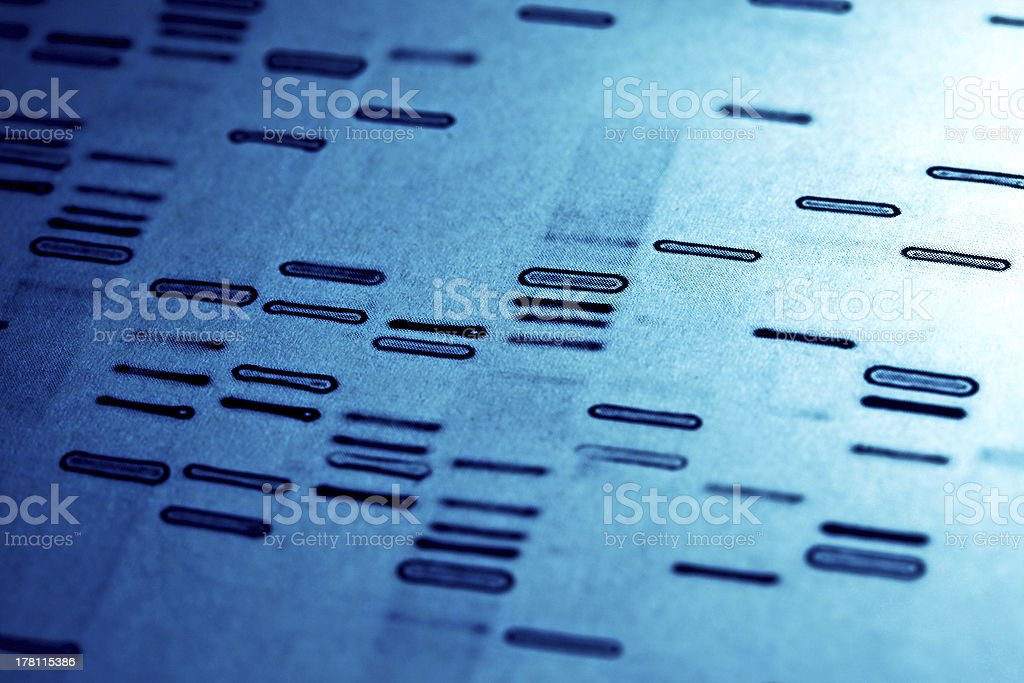 DNA fingerprints. stock photo