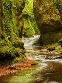Finnich Glen, near Killearn, Scotland.