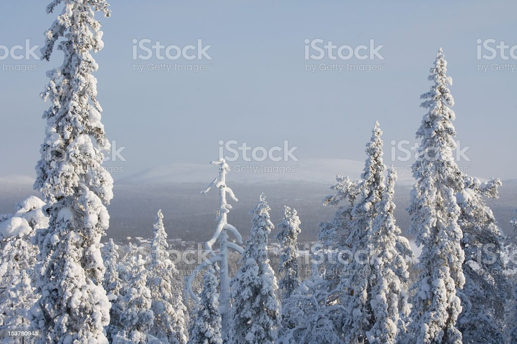 Finnish Lapland royalty-free stock photo