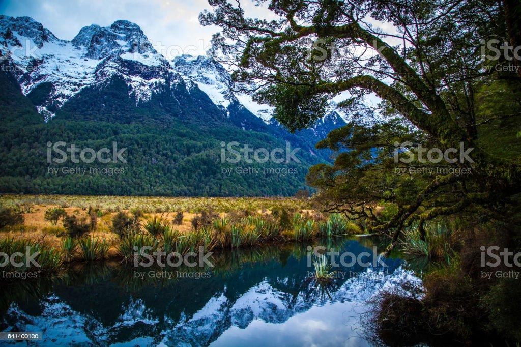 Fiordland Notional Park stock photo