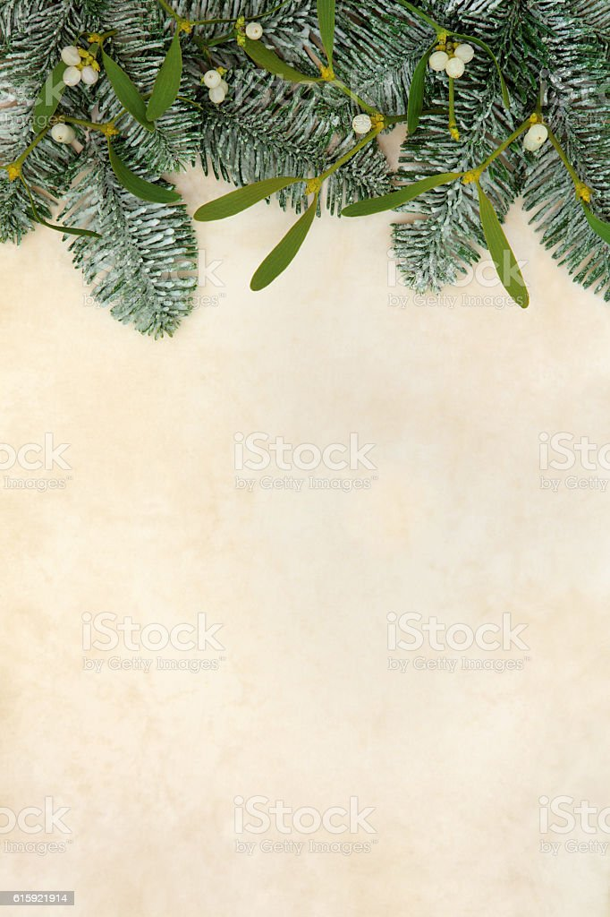 Fir and Mistletoe Border stock photo
