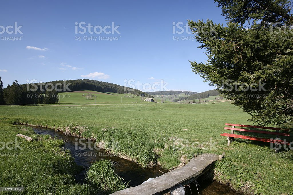 Fir, bench, brook, meadow and peaceful landscape royalty-free stock photo