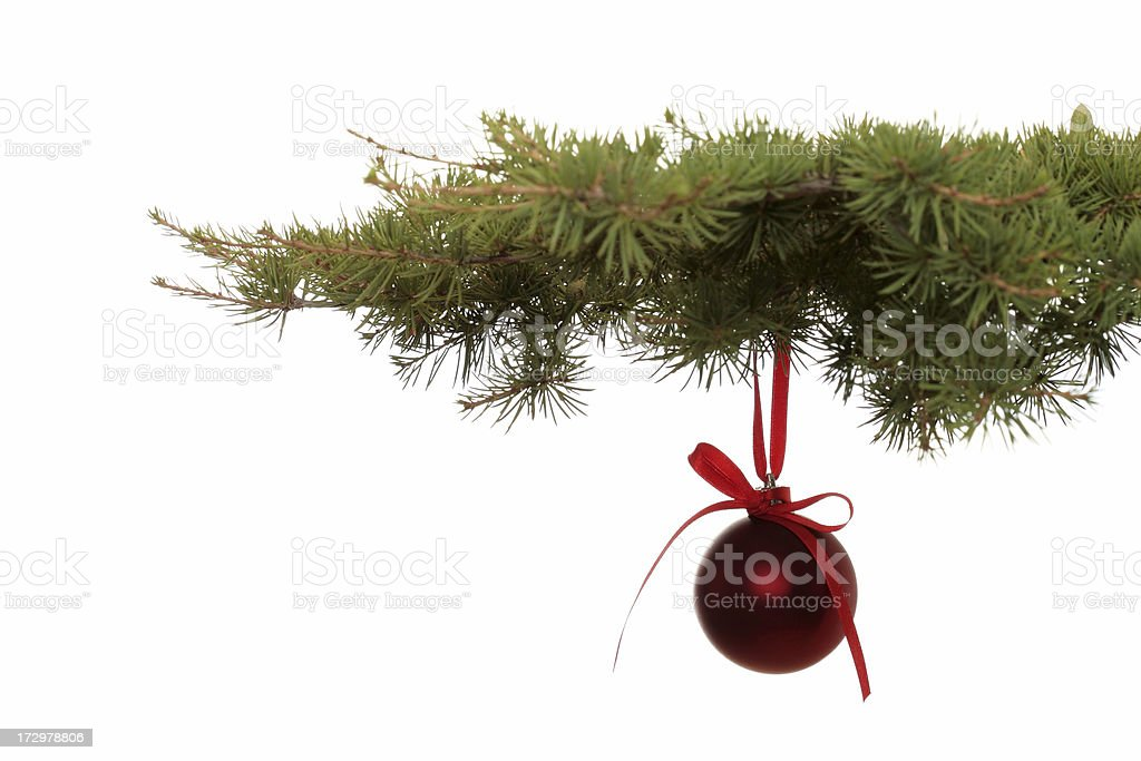 Fir Branch With Ornament royalty-free stock photo