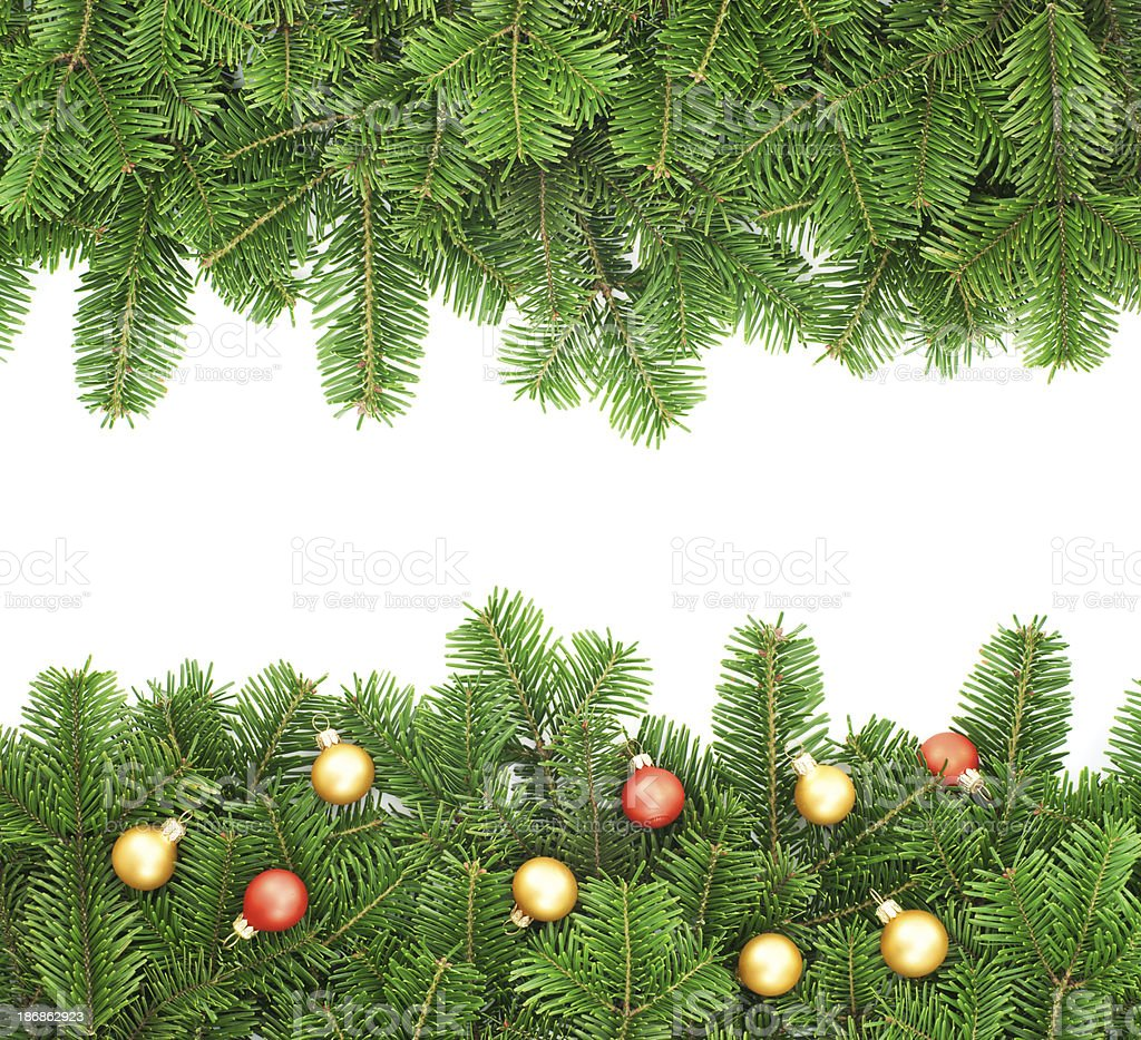 Fir tree border background royalty-free stock photo