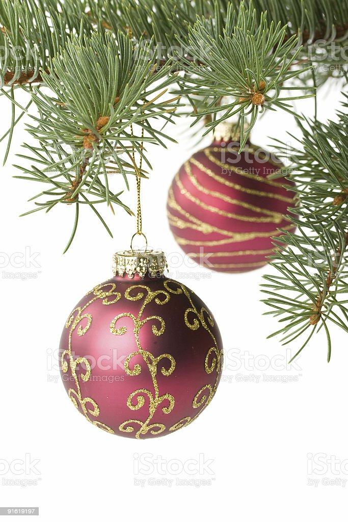 Fir tree branch with decoration royalty-free stock photo