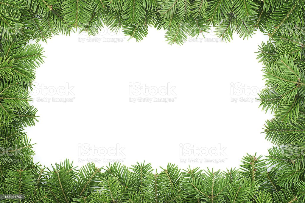 Fir tree frame  isolated on white background royalty-free stock photo