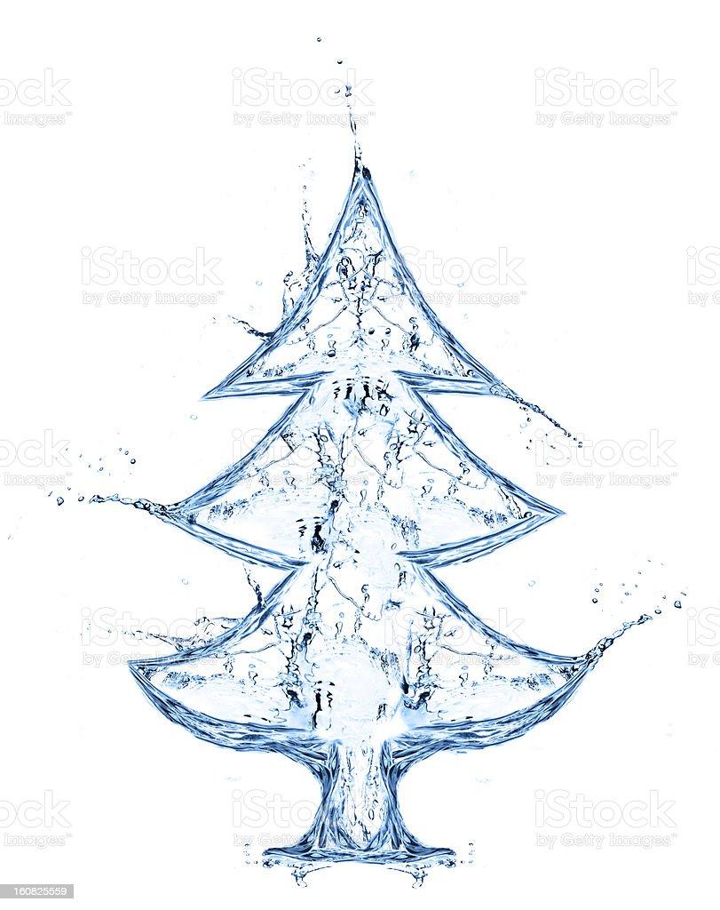 fir tree from water splash stock photo