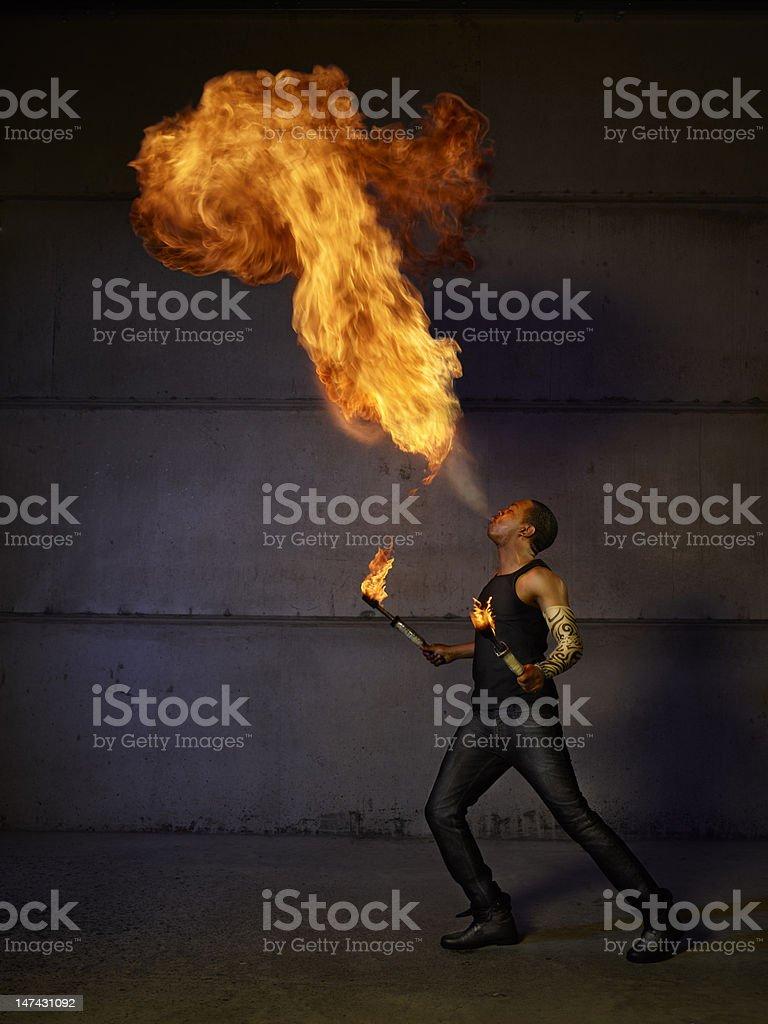 Fire breeder stock photo