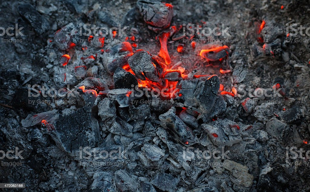 Fire burning branches and trees stock photo