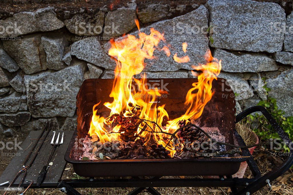 Fire burning pine cones on a barbecue. stock photo