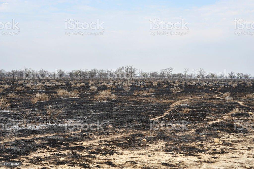 Fire evidence royalty-free stock photo