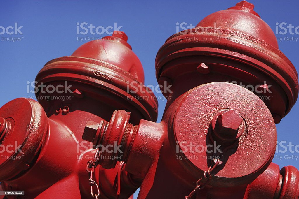 Twin red fire hydrants under clear blue sky. Palisade, Colorado, 2009.