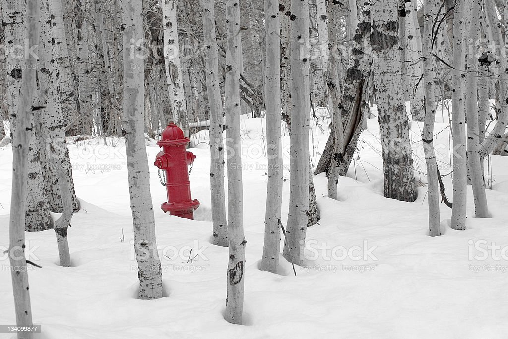 Fire Hydrant in Snow royalty-free stock photo