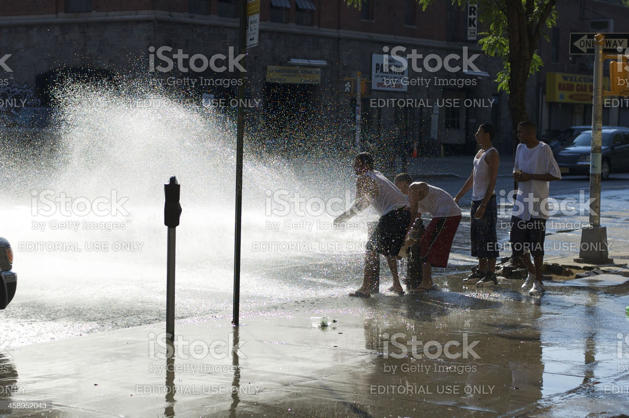 Fire Hydrant New York City Summer Day royalty-free stock photo