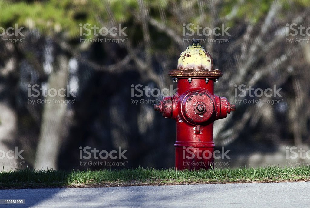 Fire Hydrant stock photo