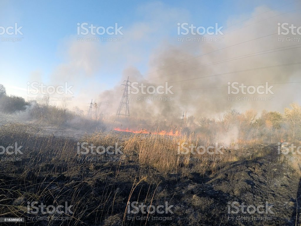 Fire in a meadowt stock photo