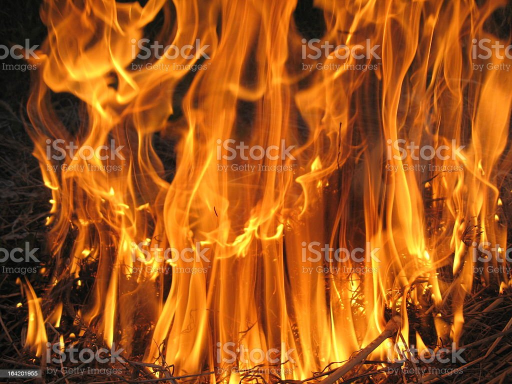 Fire in the field royalty-free stock photo