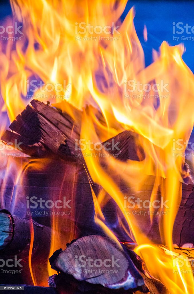 fire in the wild nature vector art illustration