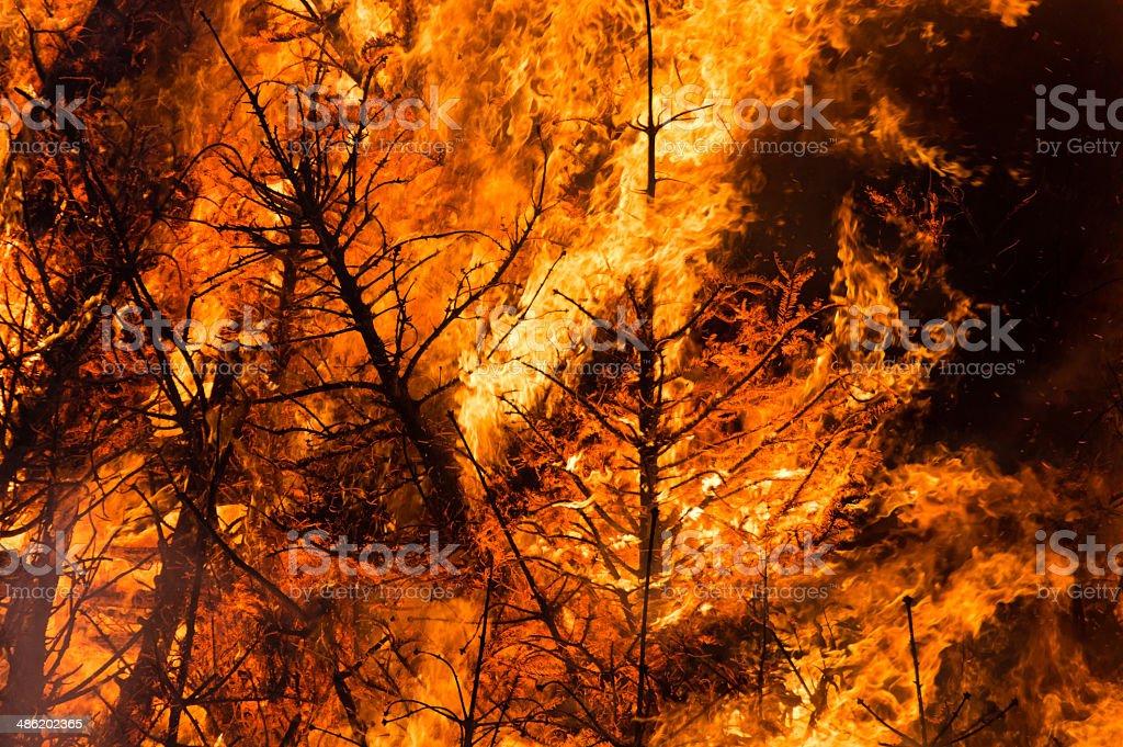 Fire inferno stock photo