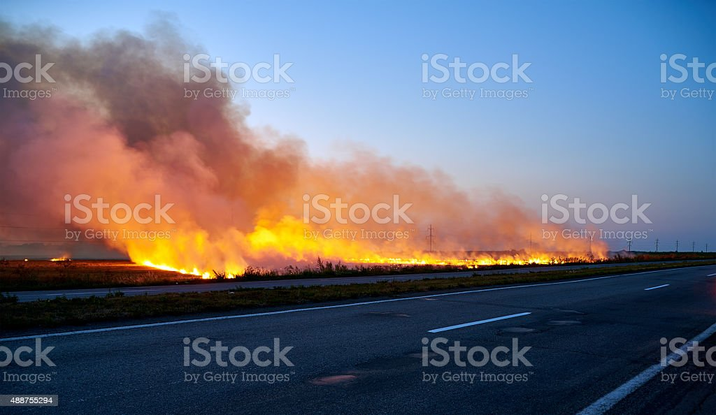 Fire on the field stock photo