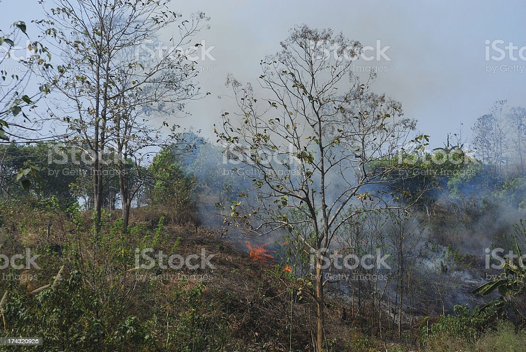 Fire on the hill after harvest royalty-free stock photo