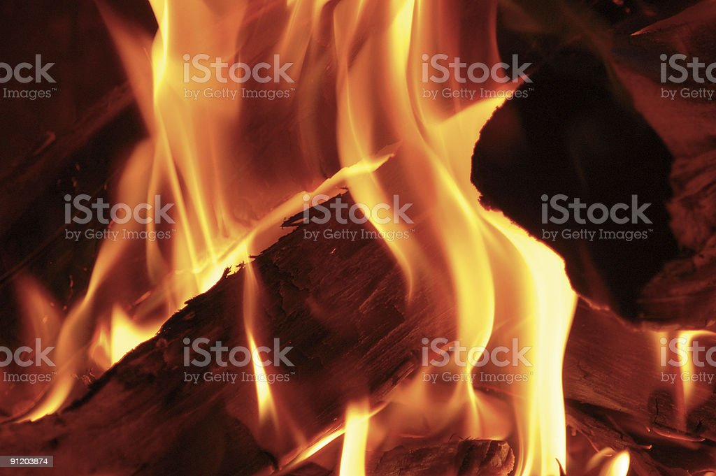 Fire on the logs royalty-free stock photo