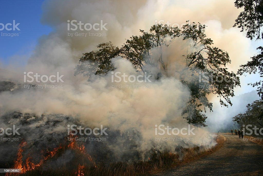 Fire on the mountain royalty-free stock photo