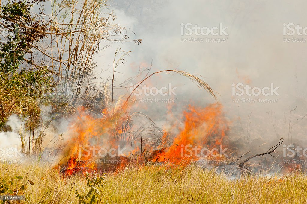 fire on the plain - controlled field burn stock photo