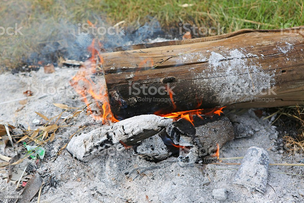 Fire on wood trunk stock photo