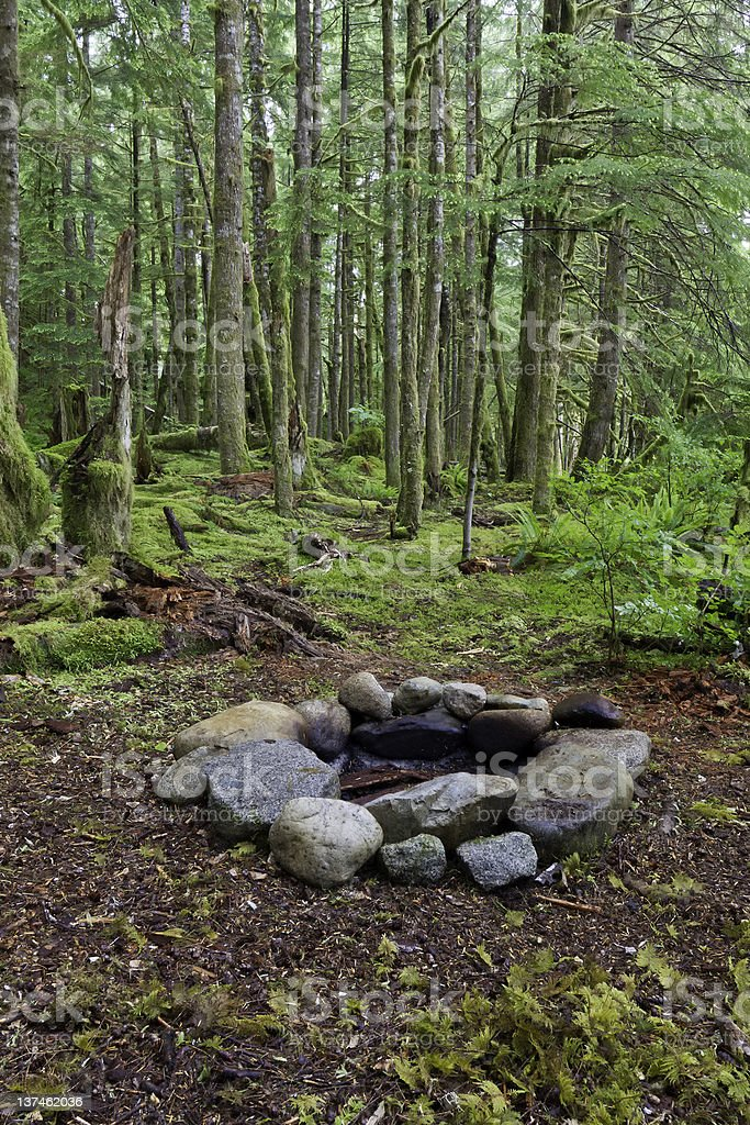 Fire Pit in the Forest royalty-free stock photo