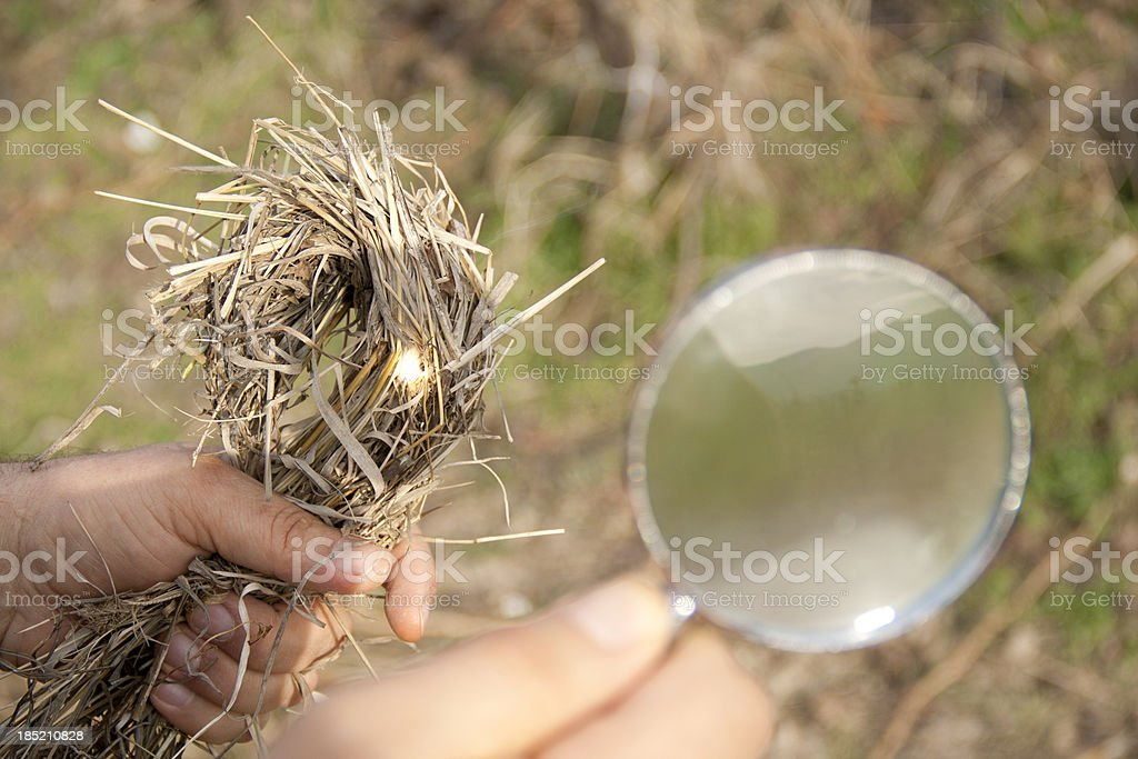 Fire with a magnifying glass stock photo