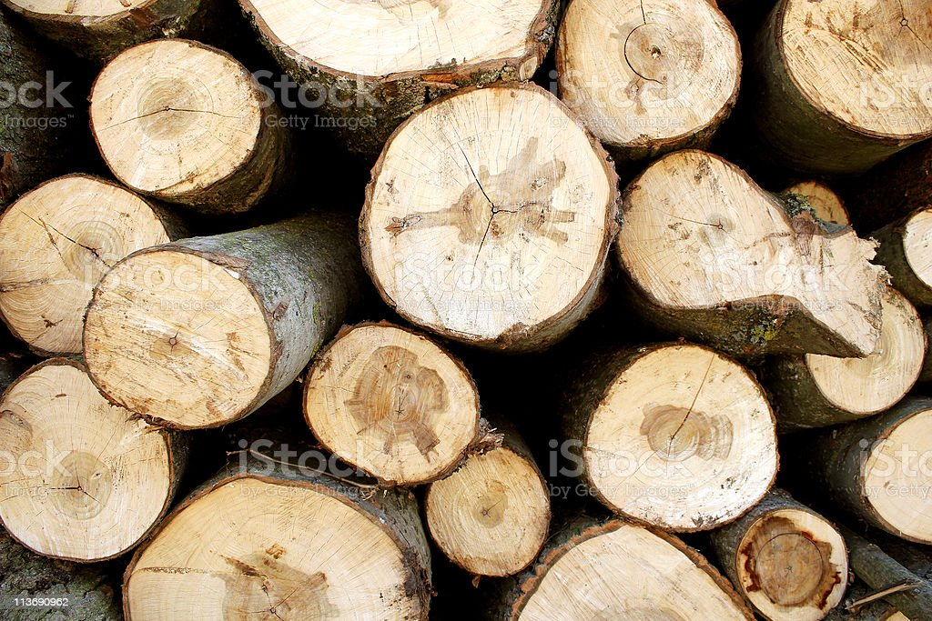 Fire wood stack royalty-free stock photo