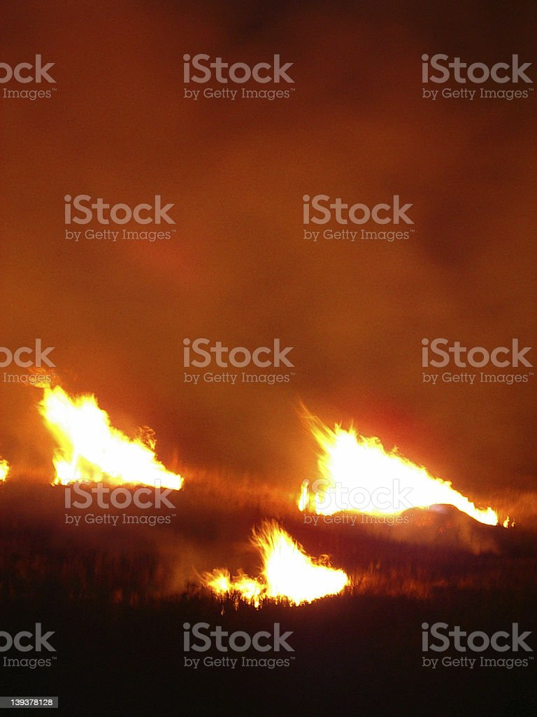 fire1 royalty-free stock photo