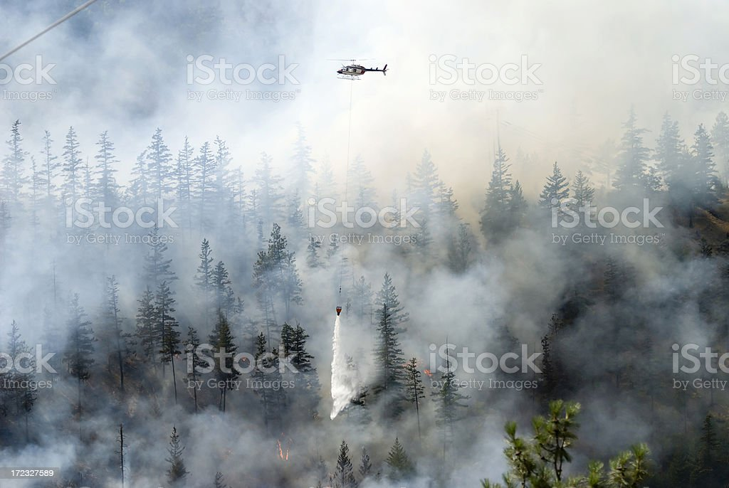 Firefighting a forest fire with white smoke stock photo
