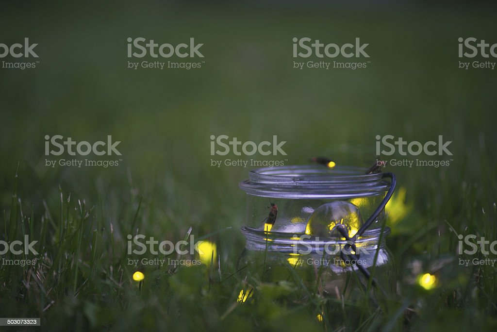 Fireflies in Jar stock photo