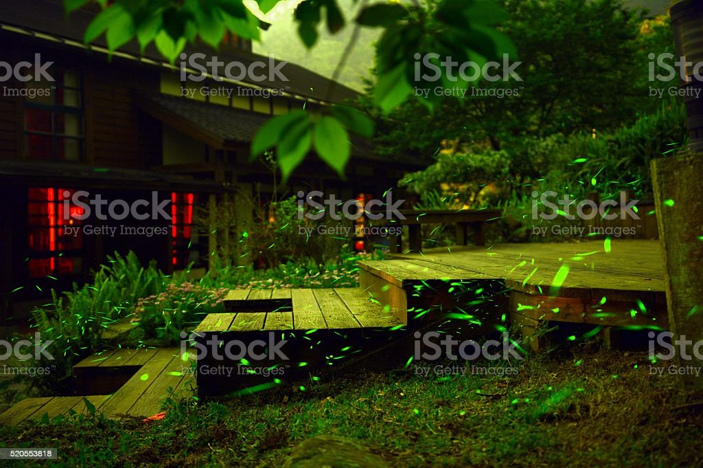 Fireflies were flying above wooden stairs and ground stock photo