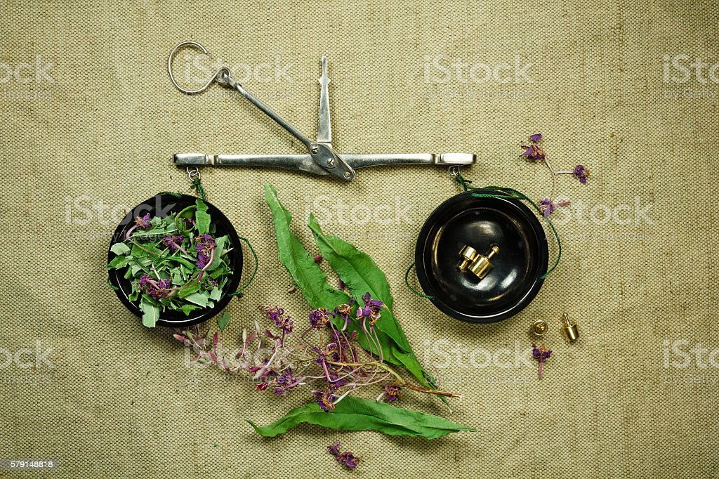 Fireweed. Dried. Herbal medicine, phytotherapy medicinal herbs. stock photo