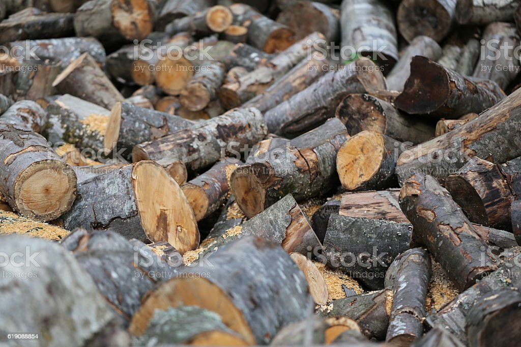 Firewood, Cut Up Tree Trunks, Woodpile. stock photo