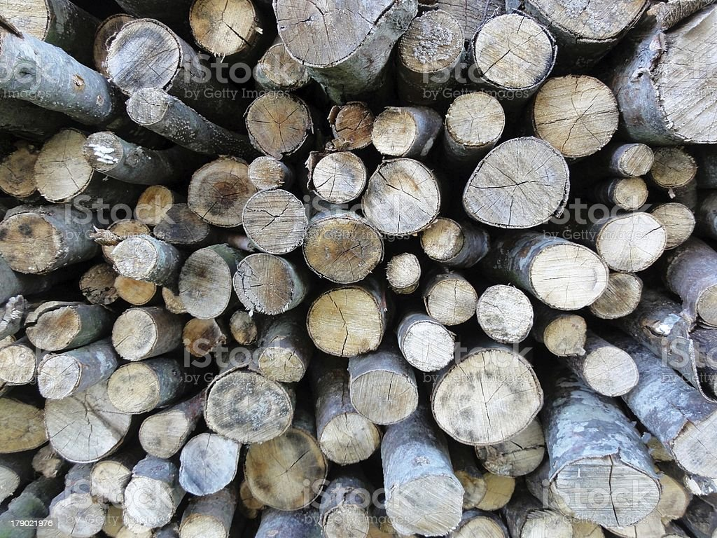 firewood drying royalty-free stock photo