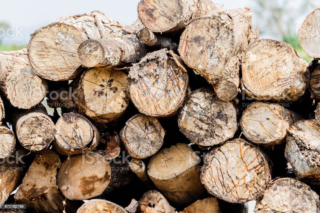 Firewood stacked and prepared for use pile of wood logs. stock photo