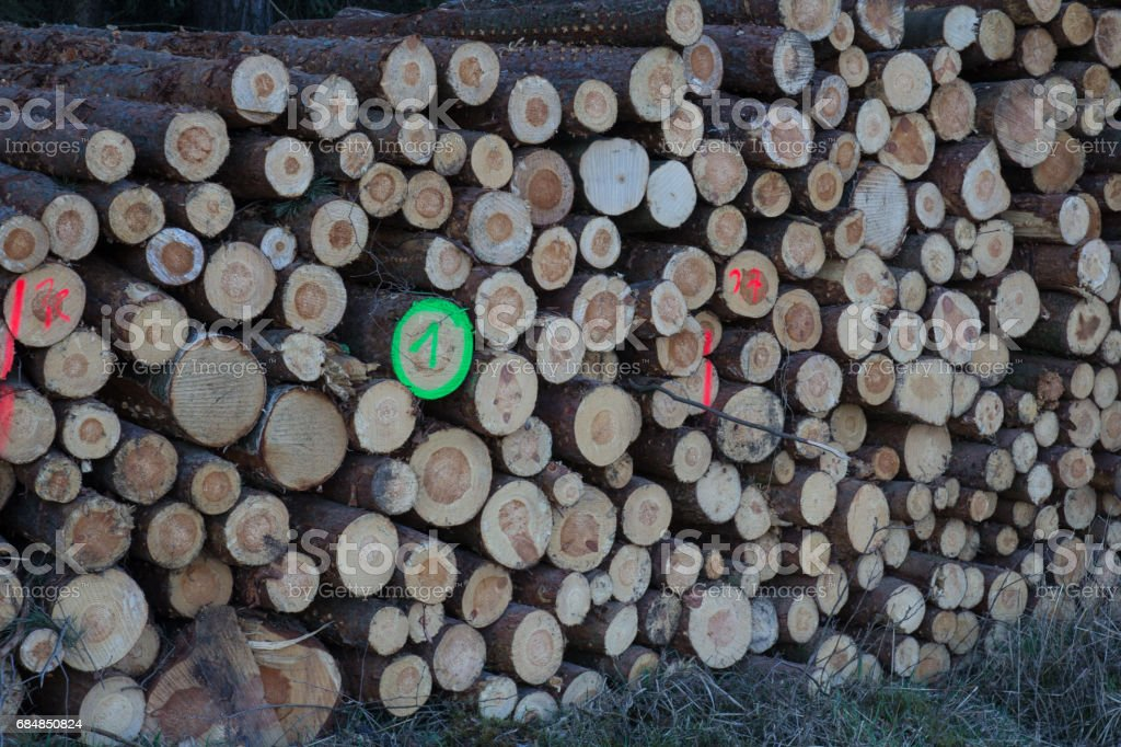 firewood stapled stock photo