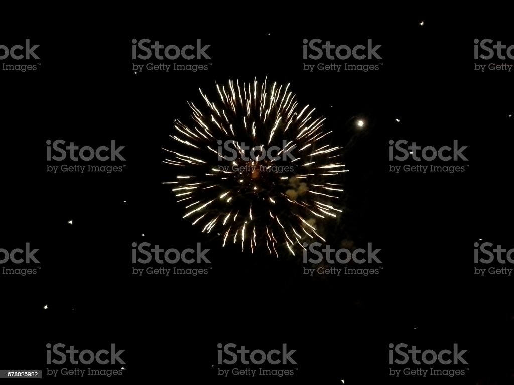 Firework in the Night Sky stock photo