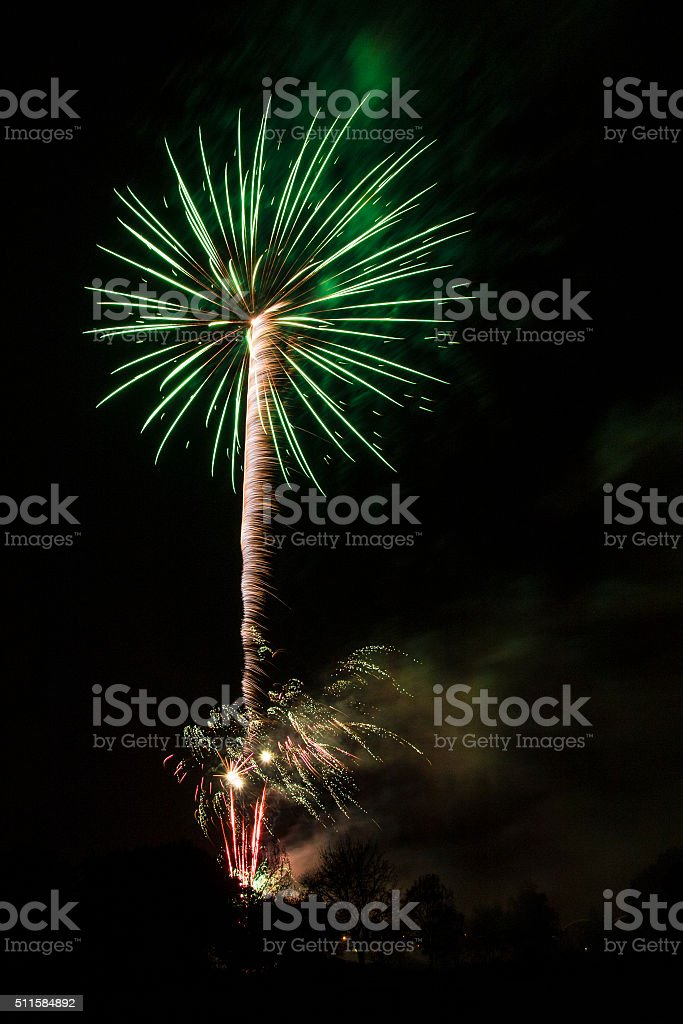 Fireworks, Abstract - Palm Tree stock photo