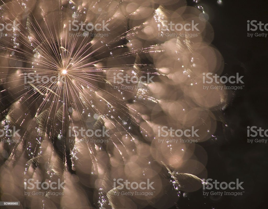 fireworks that look like a flower royalty-free stock photo