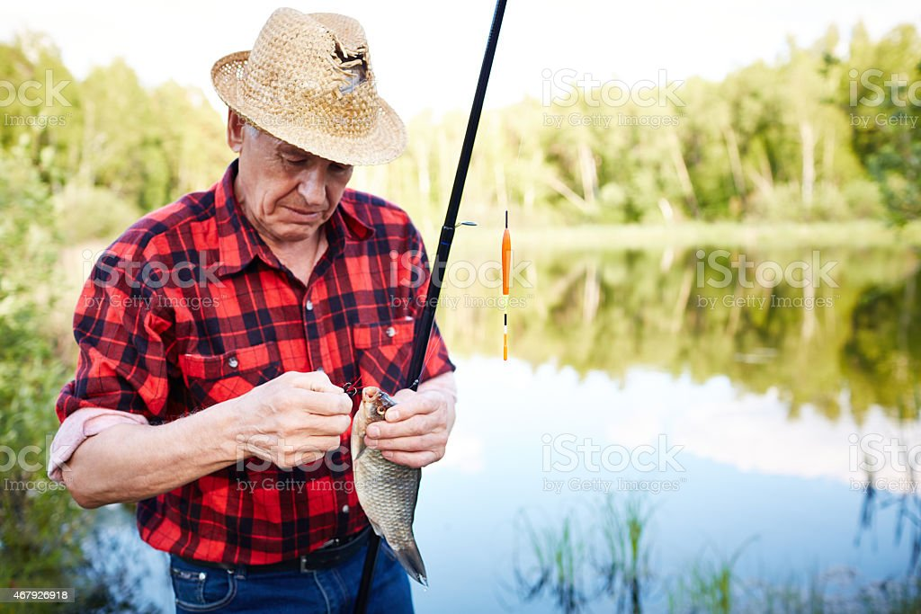 First fish stock photo