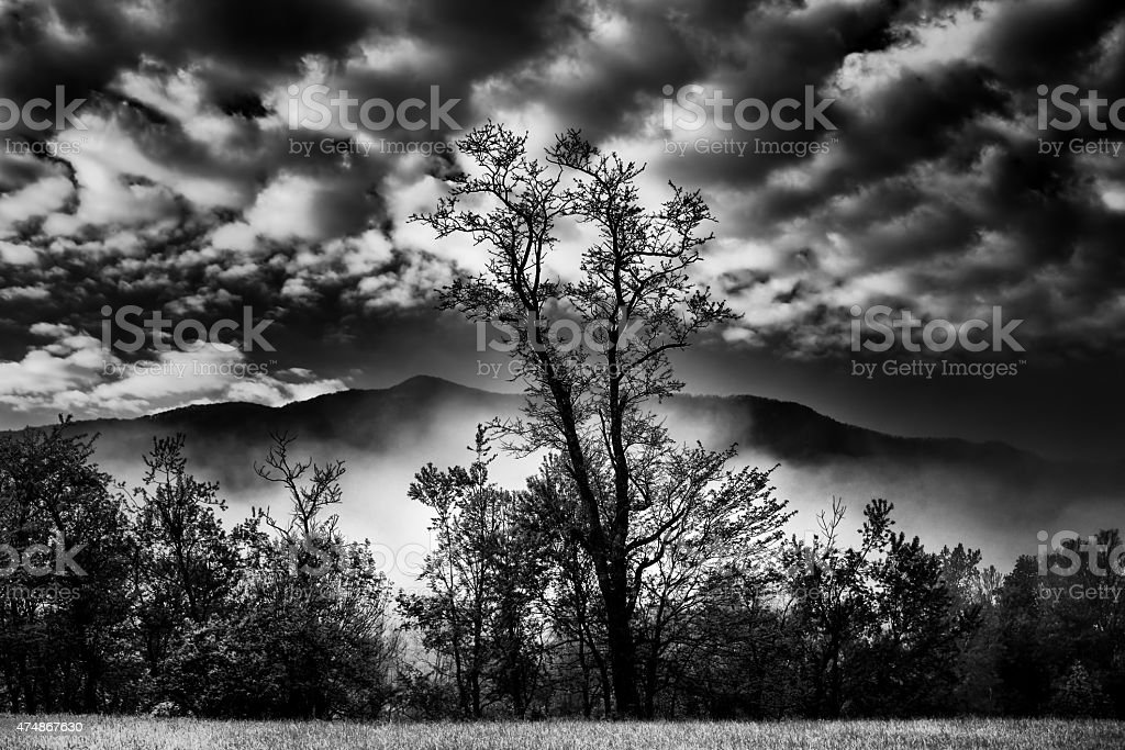 First Light in Cade's Cove stock photo