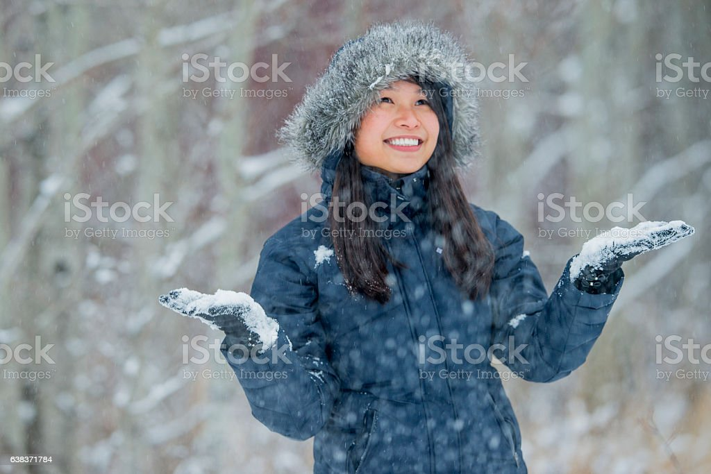 First Snow! stock photo