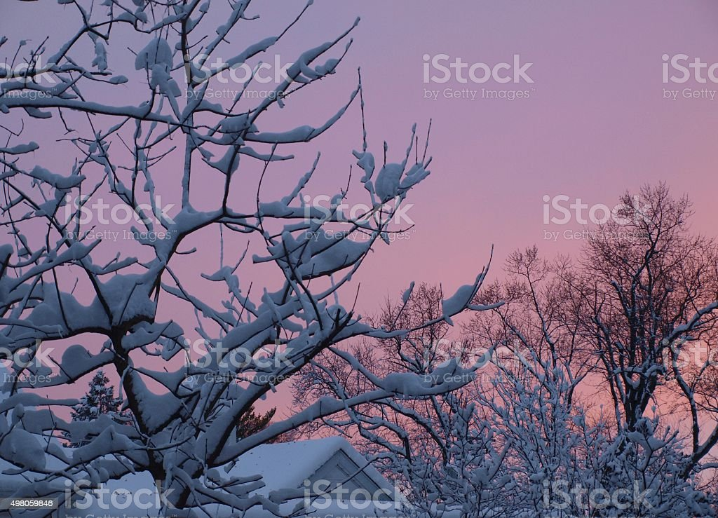 First Snow with pink sky stock photo