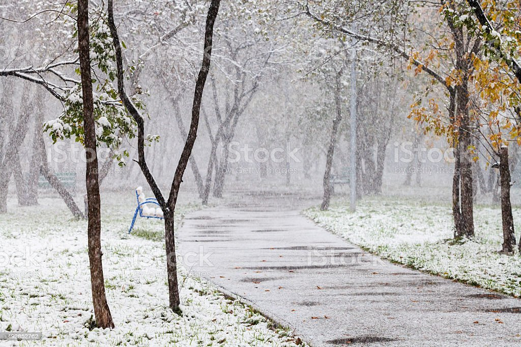 first snowfall in city park in autum stock photo