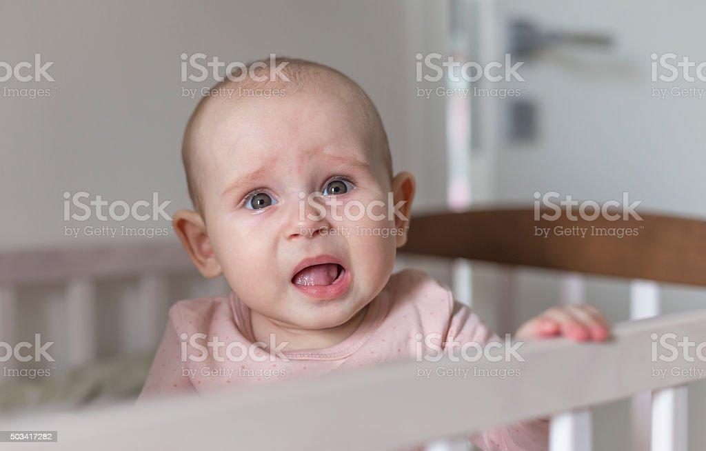 first teeth grow a baby stock photo